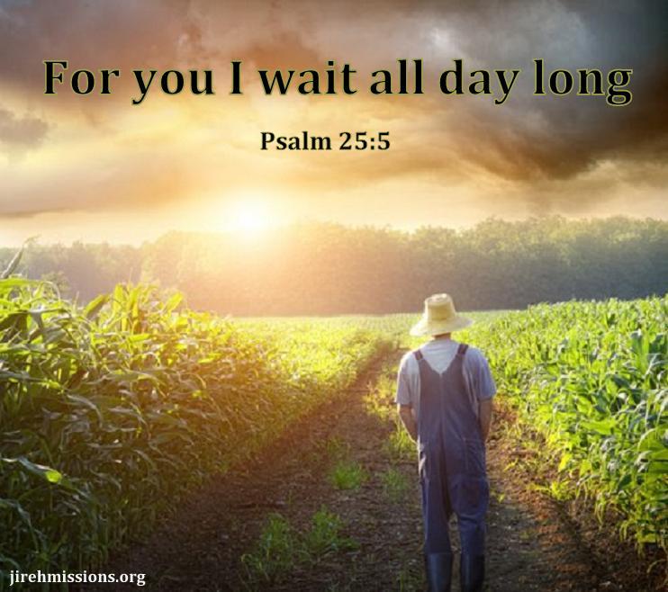 Always trust in God alone.